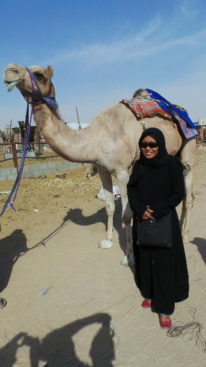 The Excitement Of Hofuf Camel Market