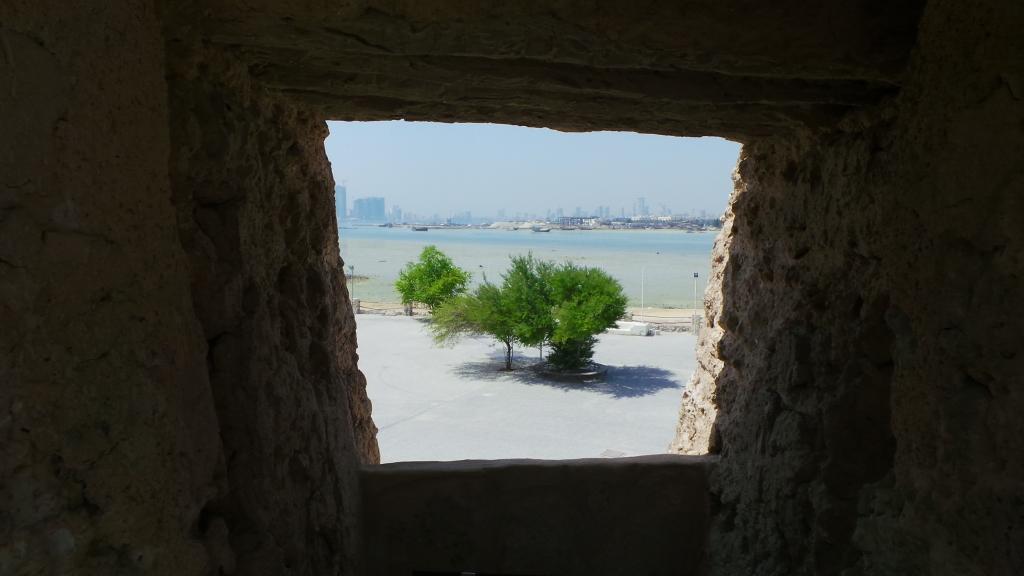 Arad Fort View